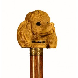 POODLE, with ash wood