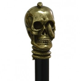 Skull with snake, old gold colour, black beech wood
