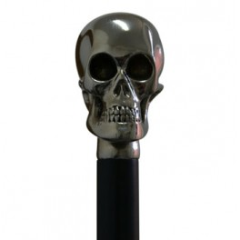 Polished nickel skull, black beech wood