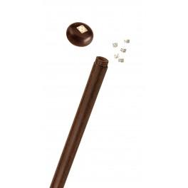 Bastón con juego de dados de hueso, madera stamina